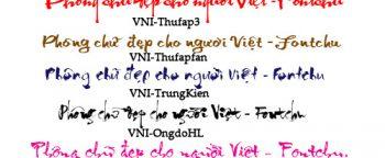 Cách sử dụng font chữ thư pháp