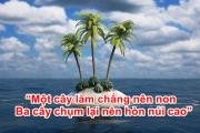 """""""Một cây làm chẳng nên non  Ba cây chụm lại nên hòn núi cao"""""""