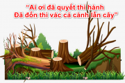 """""""Ai ơi đã quyết thì hành/Đã đốn thì vác cả cành lẫn cây"""""""