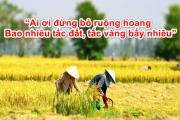 """""""Ai ơi đừng bỏ ruộng hoang/Bao nhiêu tấc đất, tấc vàng bấy nhiêu"""""""