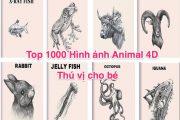 Top 1000 Hình ảnh Animal 4D thú vị cho bé