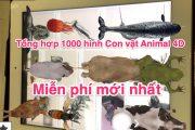Tổng hợp 1000 hình Con vật Animal 4D miễn phí mới nhất